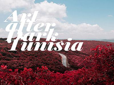 Art after Dark Tunisia | C'est La Tunisie
