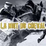 'La Nuit du Cheval' 1ère édition spectacle équestre son et lumière ce 11 octobre 2014 au Colisée d'El Jem