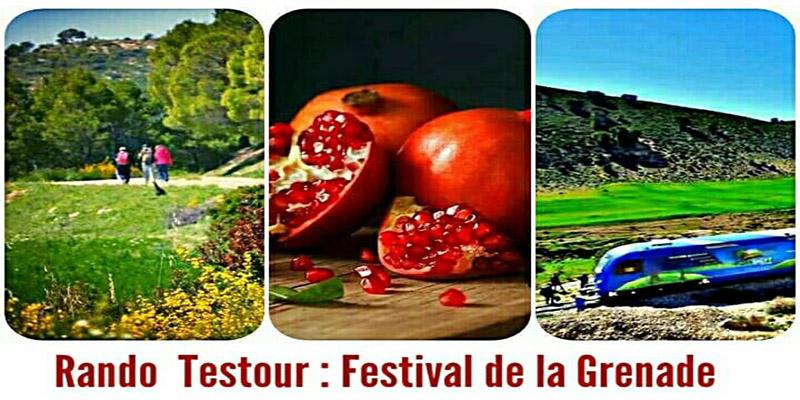 Rando TESTOUR : Festival De La Grenade